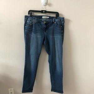 Torrid Skinny Blue Jean - Size 16S